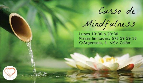 curso mindfulness en madrid susana saucedo